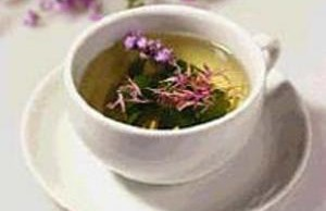 Зелёный чай способен бороться с фиброзом печени