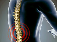 Спина: лечение и профилактика