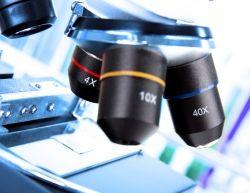 Белки, которые необходимы для диагностики рассеянного склероза