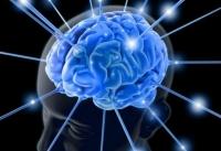 Стимуляция мозга способна сделать человека послушным