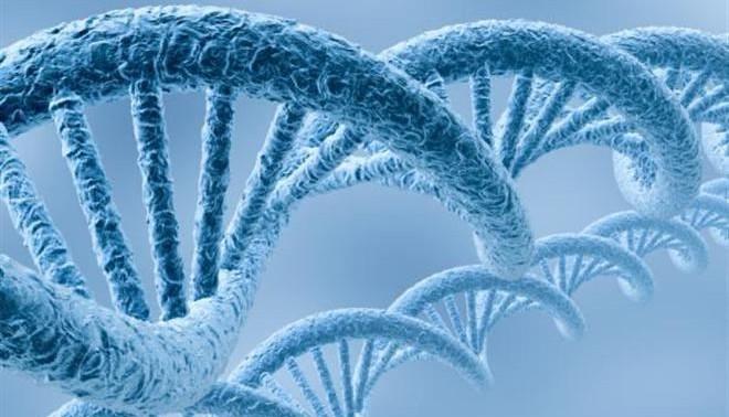 Душевные страдания и депрессия убивают ДНК