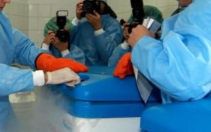 В Японии появился первый банк стволовых клеток