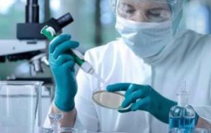 Ученые вырастили ткань легких из стволовых клеток
