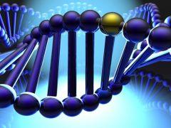 Фиброз и склеродермию провоцирует «вредный» ген
