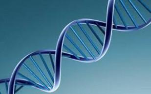 Определен генетический базис ревматоидного артрита