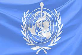 ВОЗ призвала страны Западной Африки подготовиться к возможному занесению лихорадки Эбола