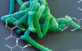 С лекарственной резистентностью патогенов США будут бороться на правительственном уровне