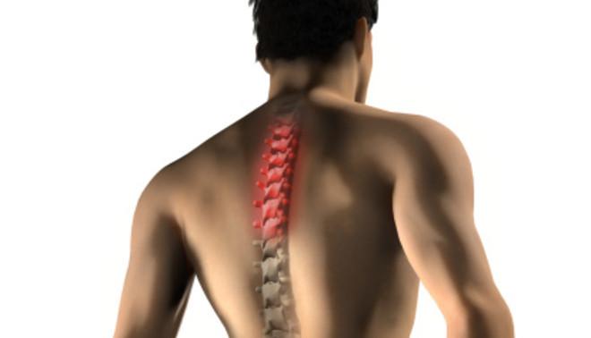 Крепкий хребет — основа здоровья: как укрепить позвоночник