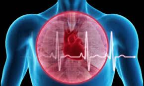 В Австралии впервые пересажено «мертвое» сердце