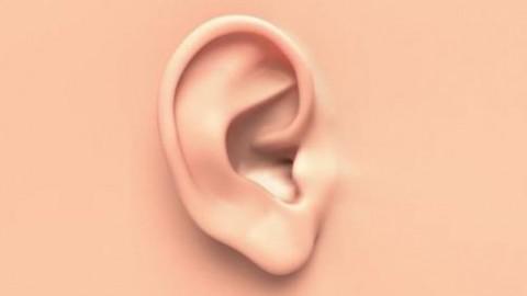 О чем говорят уши