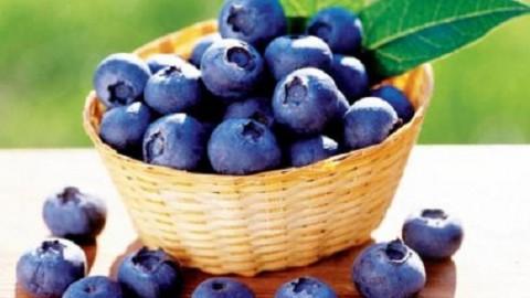 Ученые обнаружили способ, как уменьшить вредное воздействие жирной пищи на организм