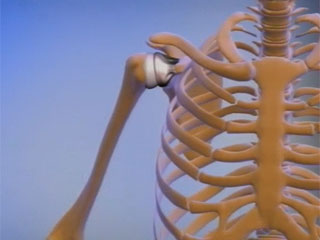 Народные средства при болях в суставах