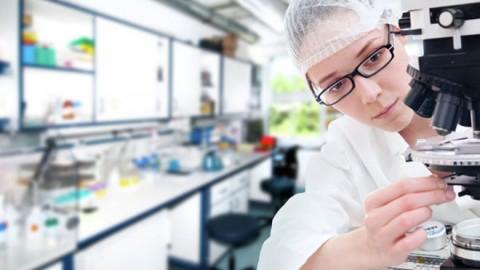 Созданы уникальные наноизвозчики лекарств, работающие при помощи желудочного сока