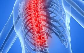 Профилактика и лечение болезней позвоночника