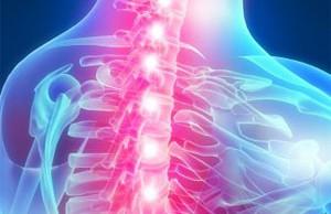 Изображение - Суставы грудной клетки 14-300x194