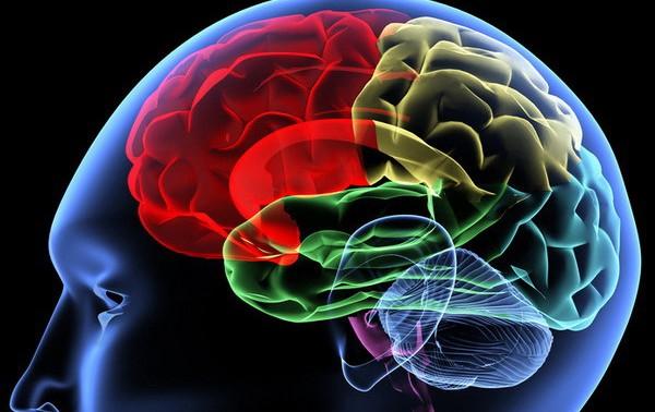 Ученые нашли связь между воспалением мозга и депрессией