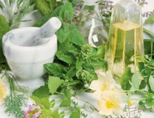 Зеленый чай способен продлевать жизнь