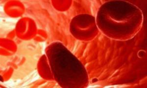 Витамин E ослабляет кости