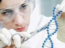 Ученые нашли ген, повышающий риск переломов