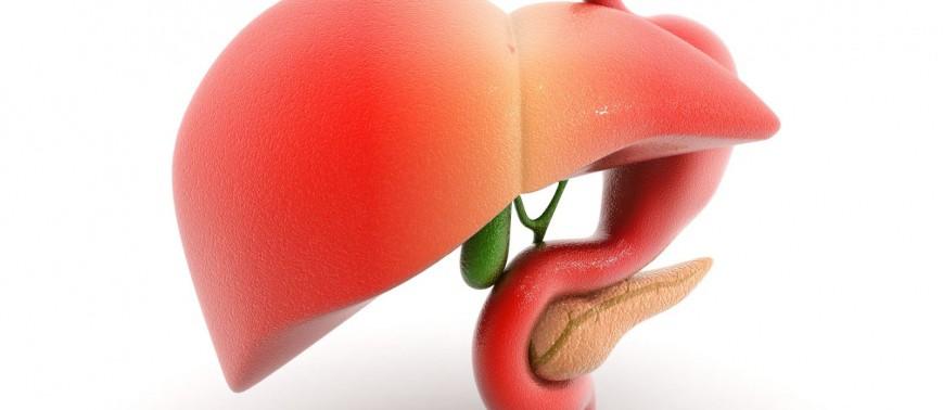 Народная медицина против болезней печени