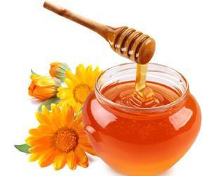 Мед в лечении почечнокаменной болезни