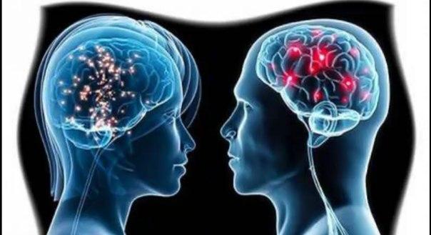 Область мозга, связанная со страхом, пробуждает в людях доброту