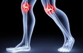 Грибковые артриты