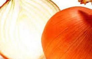 При синдроме сухого глаза помогут очанка, медовый отвар и лук