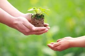 Благотворительный фонд «Дети Земли»