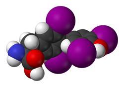 Что такое тиреотропный гормон