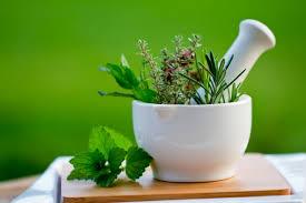 Лечение травами: советы