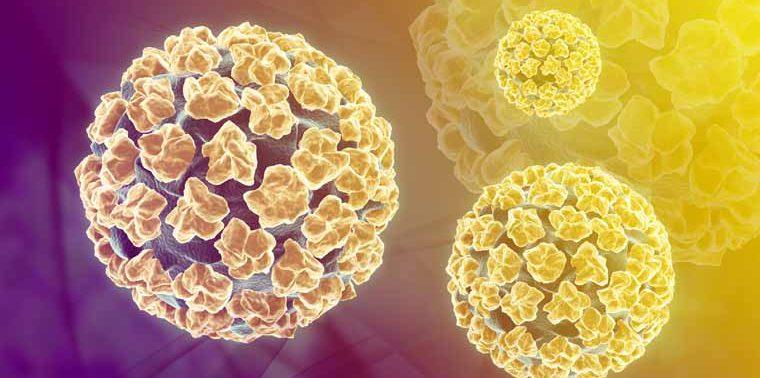 Дерматология. Причины появления и лечение вируса папилломы человека