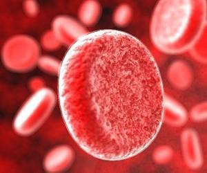 Как повысить количество лейкоцитов в крови