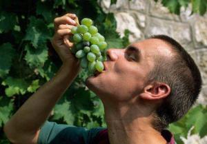 Виноград полезен для мужского здоровья