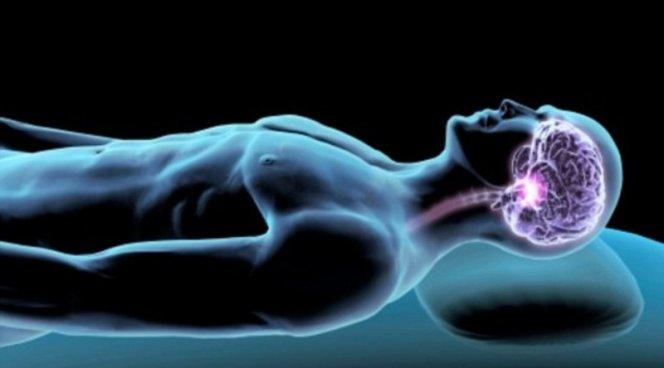 Ученые рассказали, почему треть жизни мы парализованы