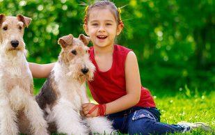 Дети и домашние животные: взгляд врача