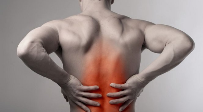 Ученые рассказали, какая еда поможет избавить от болей в спине