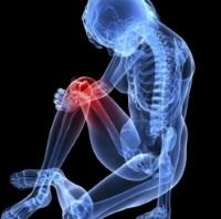 Продукты для здоровья костей и желудка без боли