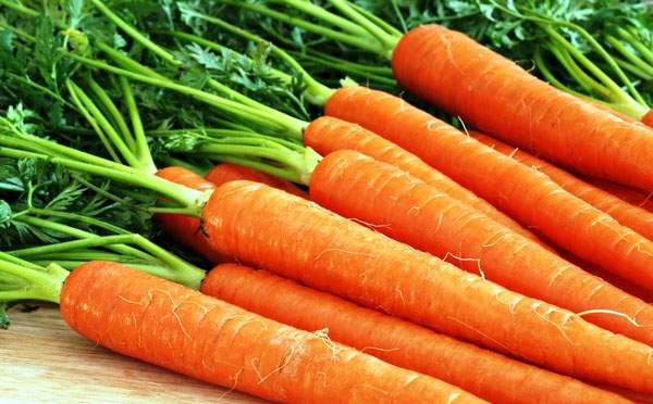 Медики назвали самый полезный овощ для укрепления костей