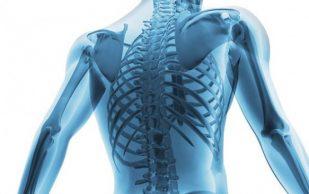 Ученые из России будут печатать человеческие кости на 3D-принтере