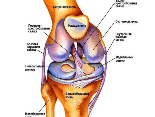 90% болей в коленях связаны не с самим коленом