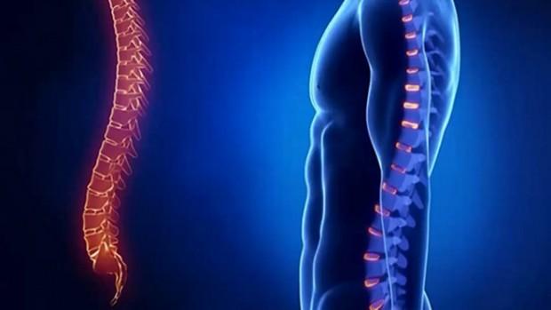 Профилактика болезней позвоночника снижает вероятность развития смертельных недугов