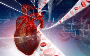 Сердечно-сосудистые заболевания и старение