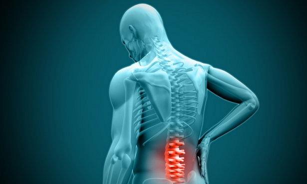 Кислородные радикалы необходимы для излечения травм спинного мозга