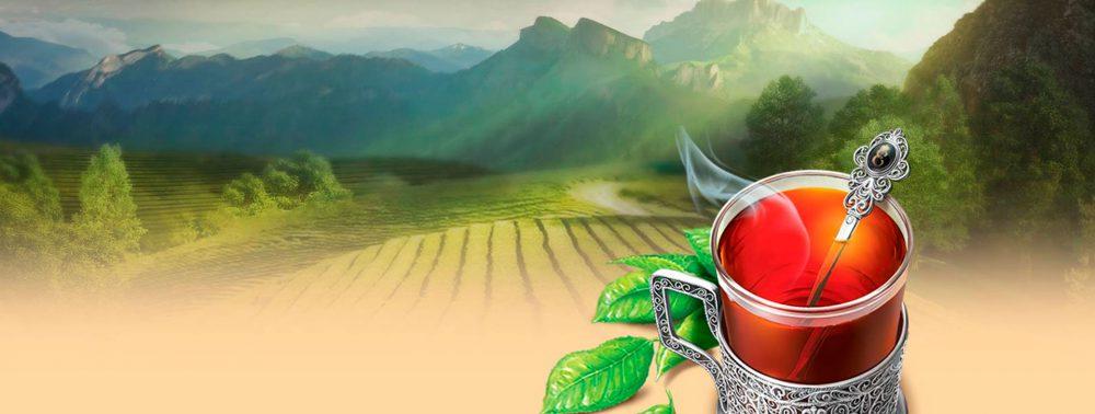Краснодарский чай с оригинальным вкусом