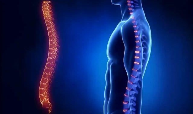Для лечения хронической боли в пояснице ученые рассматривают замену диска