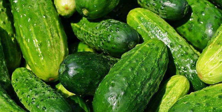 Этот овощ отлично укрепляет кости