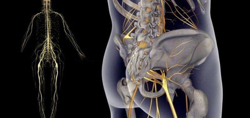 Простые упражнения при боли в седалищном нерве