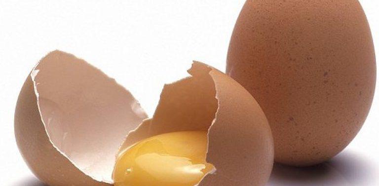 Пудра из яичной скорлупы укрепит кости и понизит давление — медики