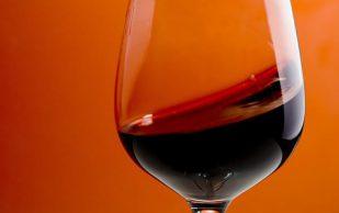 Алкоголь укрепляет женские кости, выяснили ученые